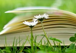专科毕业考研可以跨专业吗?